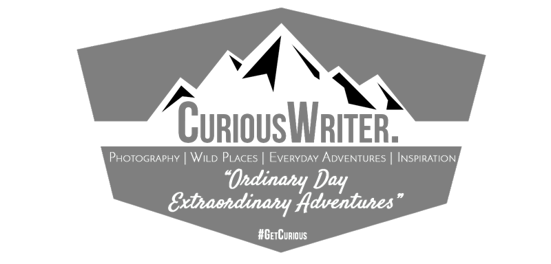 Curious Writer.
